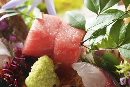 皿鉢料理「土佐本鮪の極トロ」