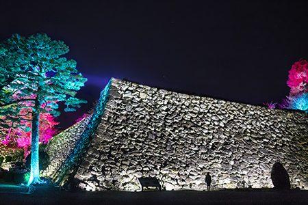 チームラボ高知城光の祭