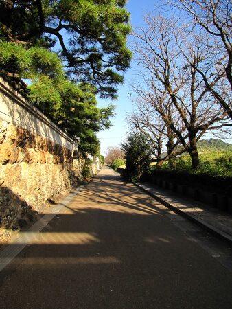 鏡川沿いの石垣塀が続く屋敷筋「龍馬を育てた道」